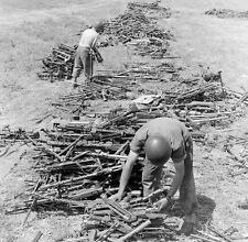 WW2 Photo WWII  Captured German Mauser Rifles  and MG34 Guns Tunisia 1943 / 4156
