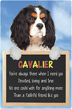 Dogs 3D Lenticular Lives Here Hang-Up Plastic Sign Cavalier Tri-Colour 15x22.5cm