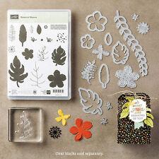 """Stampin Up """"Botanical Blooms"""" Stamp Set & Botanical Builder Framelits Bundle"""