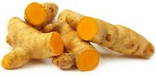 FRESH Turmeric root 200g (Free 1st Class Postage) - UK Venditore
