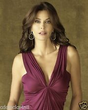 Teri Hatcher 8 x 10 GLOSSY Photo Picture Image #2