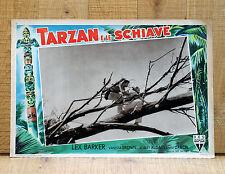 TARZAN E LE SCHIAVE fotobusta poster affiche Lex Barker the Slave Girl 1950 Tree