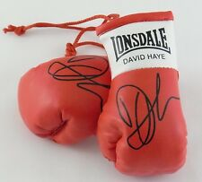 Autographed Mini Boxing Gloves David Haye