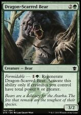4x ORSA SFREGIATA DAL DRAGO - DRAGON-SCARRED BEAR Magic DTK Mint