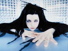 """Evanescence PoP Music Band Group Wall Poster 17x13"""" Decor 10"""