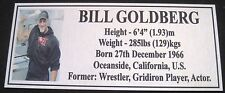 "MMA BILL GOLDBERG Champion Silver Photo Plaque ""FREE POSTAGE"""