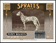 DALMATIAN ON GREAT VINTAGE STYLE DOG FOOD CALENDAR ADVERT PRINT POSTER