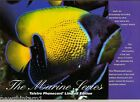 #T28. TELECOM AUSTRALIA PHONECARD PACK - THE MARINE SERIES, FISH