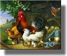 Village Rooster and Chickens Picture on Stretched Canvas, Wall Art Décor, Ready