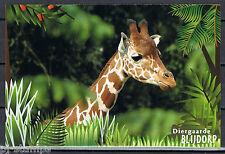 Blijdorp 150 jaar voorgefrankeerde briefkaart - postcard - Netgiraffe - Giraffe