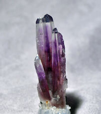 Guerrero Amethyst 3.02 inch 28.7 gram Natural Crystal Spray - Mexico