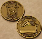 10th Special Forces Group Airborne Army Challenge Coin Brass_CCC