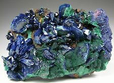 Fine AZURITE crystals on Malachite * Anhui Prov. * China
