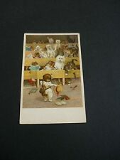 LOUIS WAIN Cats and Dog postcard, T.S.N.Ser 1899 No.6