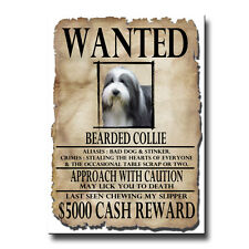 BEARDED COLLIE Wanted Poster FRIDGE MAGNET New BEARDIE