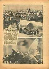 Panorama Qingdao Tsingtao China / Manoeuvre Normandie/ Pigeons 1937 ILLUSTRATION