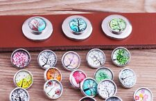 cool 10pcs 12mm fashion Snaps Chunk Charm Button for leather Bracelets U847