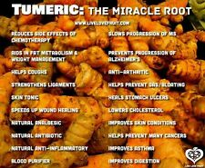 15 or 16 Turmeric Roots ,Whole,Raw ,Organic 6oz. Juice it,brew it or plant it.