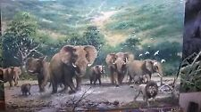 "NEW STUNNING ORIGINAL JOEL KIRK  ACRYLIC AFRICAN  ""Elephant and Lion"" PAINTING"