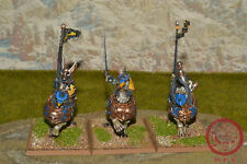 25mm Warhammer Fantasy DPS painted The Empire Demigryph Knights AP051