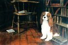 CAVALIER KING CHARLES ENGLISH TOY SPANIEL CKCS DOG LIMITED EDITION PRINT