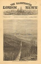 British Columbia, Canada, Forest Boundary Line, Vintage 1872 Antique Art Print