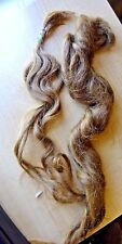 "Antique Human Hair Locks- Doll Wig Making ? 2 locks Approx. 20"" Long and 14"""