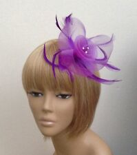Purple Hair Fascinator Centred Diamantes Weddings, Races Ladies Hen Night Party
