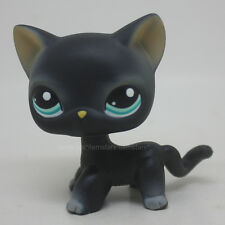 #994 Littlest Pet Shop Black Short Hair Kitty Cat Blue Eyes Figure Toy LPS