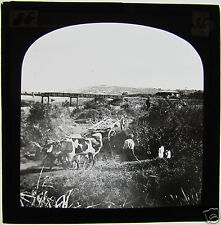 Glass Magic lantern slide CROSSING AT SPRUIT  C1890 SOUTH AFRICA