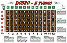 Dobro Fretboard Wall Chart Resonator Guitar Poster E Tuning Notes Chords 11x17