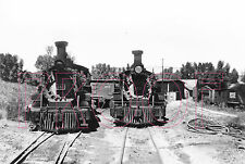 Rio Grande Southern (RGS) Engines 461 & D&RGW 452 at Ridgway Roundhouse  - 8x10