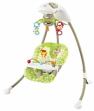 GUT: Mattel BCG33 - Fisher-Price Babyschaukel im Regenwald-Design