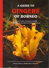 A Guide to the Gingers of Borneo