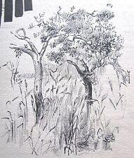 "JEAN SUTHERLAND AUSTRALIAN INK SKETCH ""TREES & DESIGN"" C 1960"
