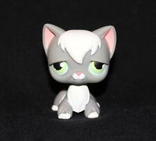 Littlest Pet Shop Dark Gray & White ANGORA CAT No LPS # Green Eyes Sam's Club