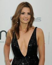 Stana Katic 8x10 Beautiful Photo #18