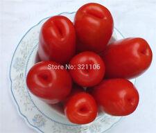 Tasty  50Rare Tomato  Seeds Easy to Plant Non Gmo Heirloom Vegetable Free Ship