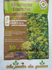graines de moutarde blanche 10m2 engrais vert ecologique naturel enrichit le sol