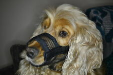 M Dog Safety Muzzle in Soft Nylon - Dog/Puppy/Cat/Kitten/Animal/Care/Gift!
