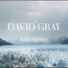 Life In Slow Motion 2005 by Gray, David