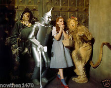#913 The Wizard Of Oz Color 8.5 x 11 Glossy Picture Photo  NOT 8 X 10