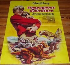 AFFICHE CINEMA COMPAGNONS AVENTURE 1962 120 X 160 DISNEY WALTER PIDGEON BIG RED