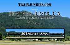 """TrainJunkies  N Scale """"Feather River Mountains"""" Background C-10 Brand New"""