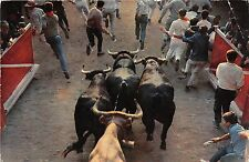 BF22506 pamplona enciera entrado al rudeo bull spain