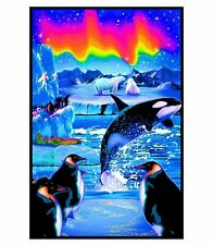 ARCTIC AURORA - BLACKLIGHT POSTER - 23X35 OCEAN FANTASY ART KILLER WHALE 6035