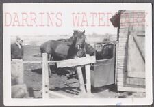 Vintage Snapshot Photo Horses By 2 Door Coupe Barn Stable 713512