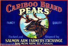 Salmon Arm B.C.Canada Cariboo Deer Pear Fruit Crate Label Art Print