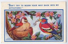 Bird presents worm to his mate vintage Comic Postcard by Bob Wilkins