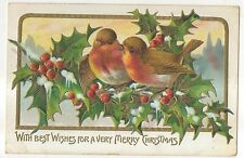 Best Wishes for a Very Merry Christmas, Songbirds, Robins Holly Vintage Postcard